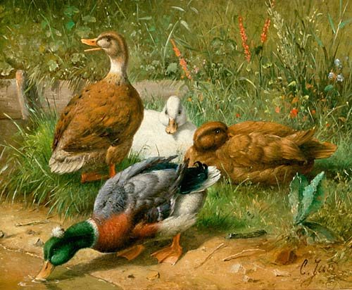 Carl Jutz d.Ä. - Ducks at the waterside of a pond