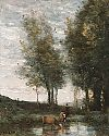 The pond, cowherd
