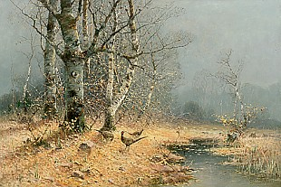 Otto Fedder - Pheasants in a autumn birch grove