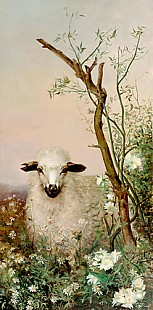 Augusto Raminecz Conzalves - Sheep at bloomy bushes