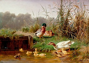 Carl Jutz d.Ä. - Group of ducks and chicks at a pond