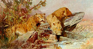 Joseph Brunner - Couple of lions at the drinking trough