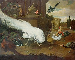 Melchior Hondecoeter - Poultry farm at palace grounds