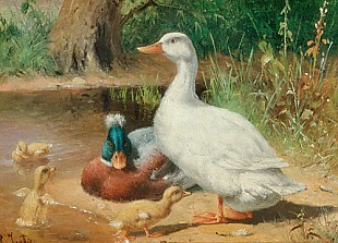 Carl Jutz d.Ä. - The family of ducks