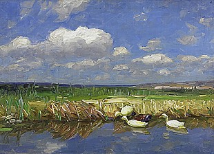 Alexander Koester - Ducks at a lakefront