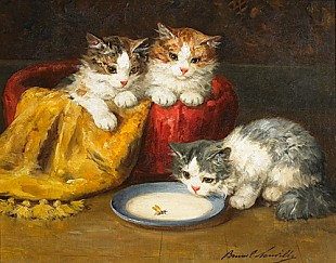 Bernard Neuville - Young cats with bee