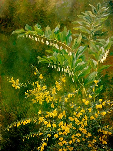 Anthonorre Christensen - Still life with yellow blooming broom
